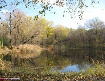 Озеро в ботсаде