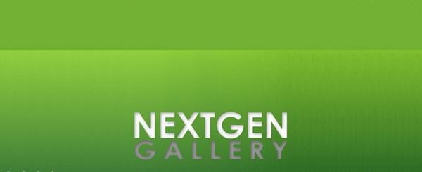 Допиливаем вменяемые титлы к NextGEN Gallery