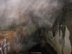 кто-то в тумане