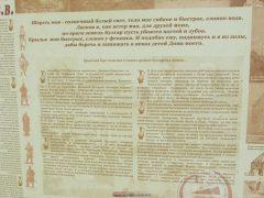 информация о Волжской Булгарии