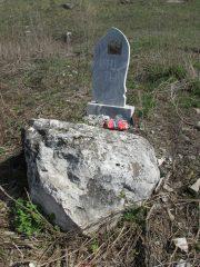 могила неизвестной свиньи